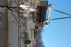 Auf-Dachterrasse-mit-Autokran-via-Baum